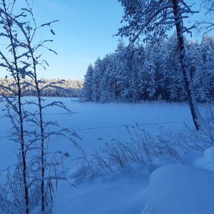 Näkymä Aitolammen rannasta talvipäivänä.