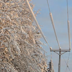 sähkölinjoja lumen peitossa