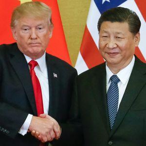 Xi Jinping ja Donald Trump