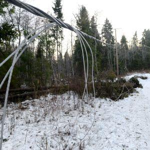 Myrskyn katkomaa sähkölinjaa Vaasassa 2. tammikuuta