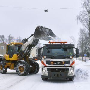 Kauhakuormaaja lastaa lunta kuorma-auton lavalle