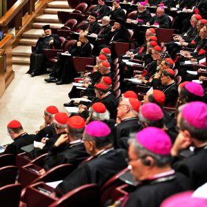 Paavi Franciscus oli paikalla Vatikaanissa meneillään olevassa piispojen kokouksessa 23. helmikuuta.