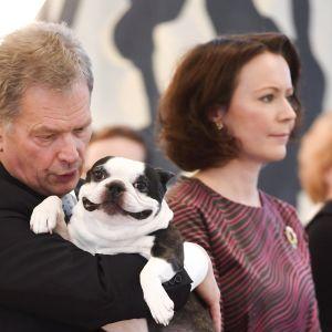 Lennu -koira vei mediahuomion kun Tasavallan presidentti Sauli Niinistö ja puolisonsa Jenni Haukio vastaanottivat perinteiset joulutervehdykset presidentin virka-asunnolla Mäntyniemessä Helsingissä torstaina 15. joulukuuta 2016.