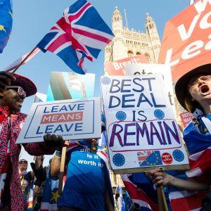 Brexitin kannattajat ja vastustajat osoittivat mieltään parlamenttitalon edustalla Lontoossa 27. helmikuuta.