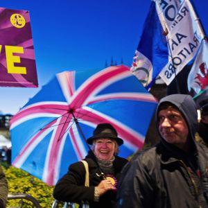 Brexitiä kannattavia mielenosoittajia.