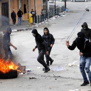 Palestiinalaisnuori linkoamassa kiveä kohti Israelin sotilaita Hebronissa maaliskuussa 2019.