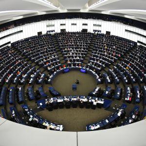 EU-parlamentin istuntosali Strasbourgissa.
