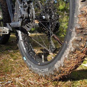 Maastopyörän renkaaseen on tarttunut kuusen neulasia