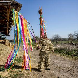 """""""Marssiva Juudas"""", tshekkiläinen pääsiäisperinne.  Kylän vanhin teinipoika puetaan heinästä tehtyyn pukuun ja korkeaan hattuun joka symboloi Juudasta joka petti Jeesuksen."""