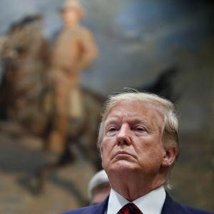 Donald Trump taidemaalauksen edessä.