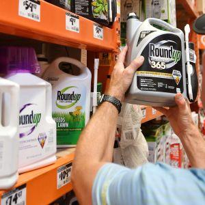 Roundup-tuotteita myynnissä San Rafaelissa, Kaliforniassa.
