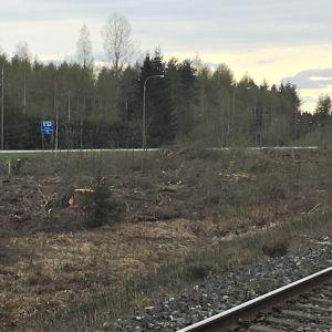 Rautatien lähialue raivattu puustosta Liperin Käsämässä Joensuun länsipuolella.