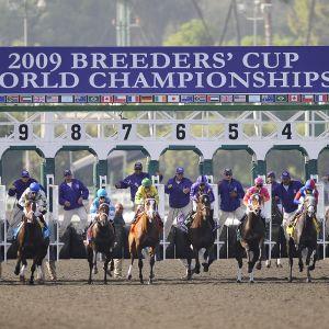 Santa Anitan laukkarata Kaliforniassa on ollut huomion keskipisteenä hevoskuolemien vuoksi. Kuva on marraskuulta 2009.
