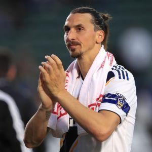 Zlatan Ibrahimovic lähikuvassa.
