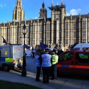 Tässä brittipoliiseja parlamenttitalon edustalla tammikuussa.