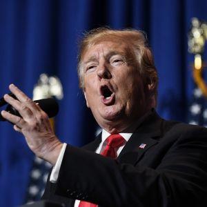 Presidentti Donald Trump puhui Washingtonissa 17. toukokuuta.