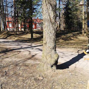 Rautatienpuisto Riihimäellä, pääsiäiskoristeita etualalla