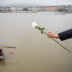 Kukkaa pitelevä käsi. Taustalla Tonava ja pelastusvene.