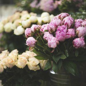 Pioneja ja ruusuja kukkakaupan edessä.