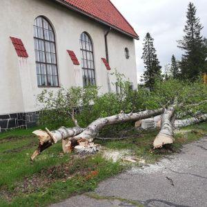 Kemijärven kirkon peruskorjaustyöt aloitettiin kesäkuun toisella viikolla. Ensin kaadettiin kirkkoa reunustavat koivut.