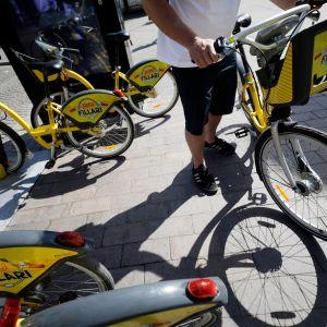 Kaupunkipyörät ovat parkissa.