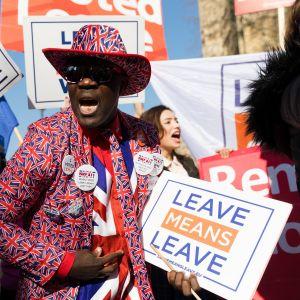 EU-eron kannattajia kyltteineen ja lippuineen.