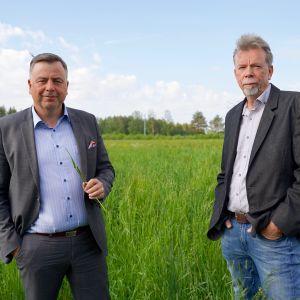 Pedersören kunnanjohtaja Stefan Svenfors ja Pedersören konserniyhtiön toimistusjohtaja Kjell Gripenberg