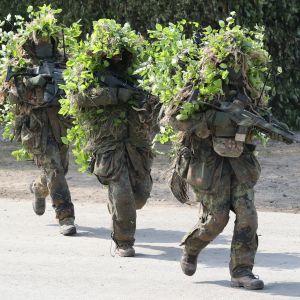 Oksilla ja lehdillä naamioituneet kolme sotilasta.