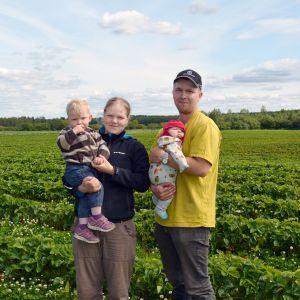 Katariina ja Heikki Riihon tilalla Tuurissa hoituvat niin lapset Eino ja Vilja kuin myös yli neljä hehtaaria mansikkaa.