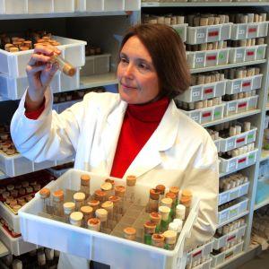 Molekyylibiologi Suzanne Eaton Max Planck -instituutista kuvattuna vuonna 2005.