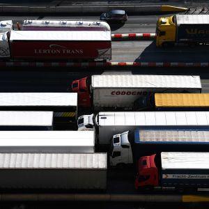 Rekkajono ennen rajatarkastusta Doverin satamassa.