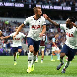 Harry Kane ja Danny Rose juhlivat maalia Tottenham-paidassa.