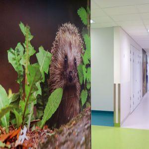 Tampereen uuden lasten ja nuorten sairaalan käytävä