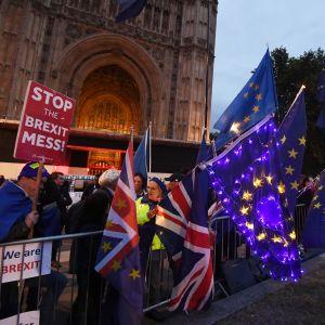 Brexit-vääntöön kyllästyneet mielenosoittajat seurasivat Britannian parlamentin maratonistuntoa 9. syyskuuta.