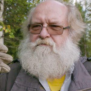 Professori Heikki Henttonen on tutkinut myyriä Lapissa samoilla paikoilla vuodesta 1970