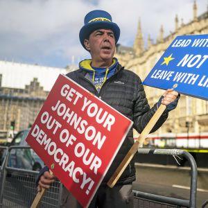 EU:ssa pysymisen puolesta kampanjoiva Steve Bray kyltteineen parlamenttitalon edustalla Lontoossa.