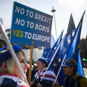Brexitiä vastustavat mielenosoittajat kokoontuivat parlamenttitalon edustalle Lontoossa tiistaina.