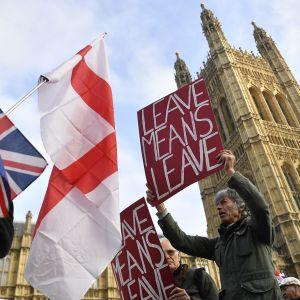 Brexitin puolustajat osoittivat mieltään Lontoossa 31. lokakuuta.