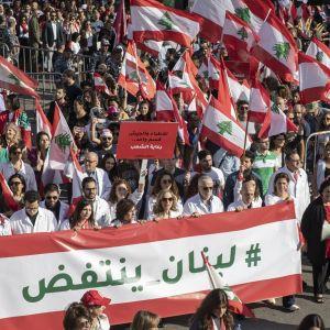 Kuvassa mielenosoittajia, joista monet kantavat Libanonin lippuja.