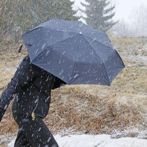 Nainen kulkee sateenvarjolla lumipyryssä.