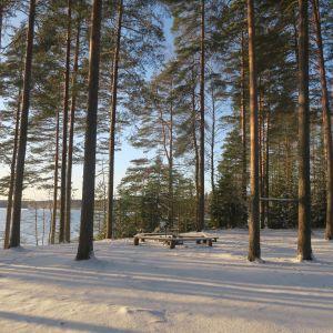 Tarusjärven leiri- ja nuotiopaikka
