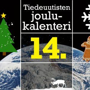 Tiedeuutisten joulukalenteri-kuvituskuva