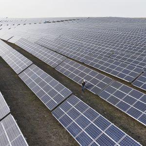 Aurinkopaneeleita Yaroriv 1-voimalassa Lvivissä Ukrainassa.
