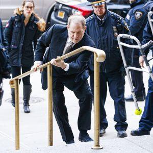 Weinstein saapuu oikeudenkäyntiin.