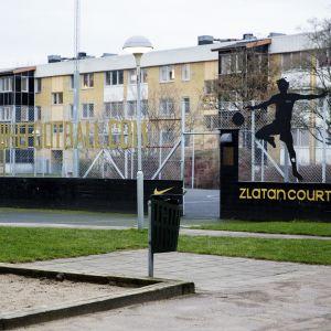 Zlatan Ibrahimović Malmö.