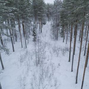 Murtosuon tila Pohjois-Pohjanmaalla Vaalassa.
