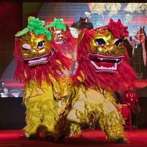 Tanssijoista lavalla Helsingissä kiinalaisen uudenvuoden juhlissa 2019