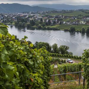 Jokinäkymä Trierin alueella.