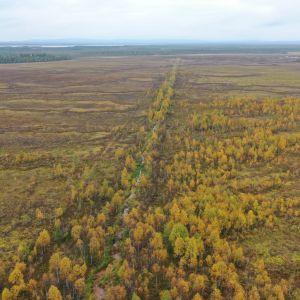 Kilpiaavalle on aikanaan kaivettu pitkiä ojia suon kuivattamiseen maataloutta varten.