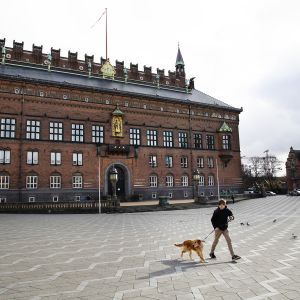 Poika ulkoiluttaa koiraa tyhjällä torilla.